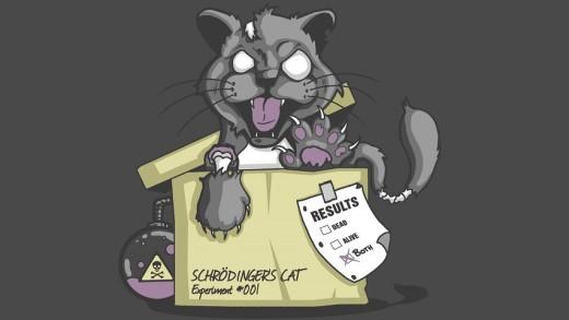 گربه شرودینگر از مکانیک کوانتومی می گوید