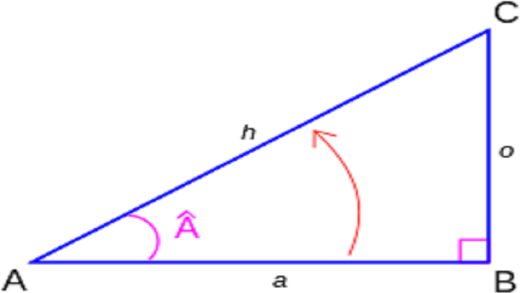 نسبتهای مثلثاتی در مثلث قائم الزاویه